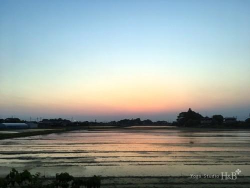 羽生市の絶景、今日の夕焼け