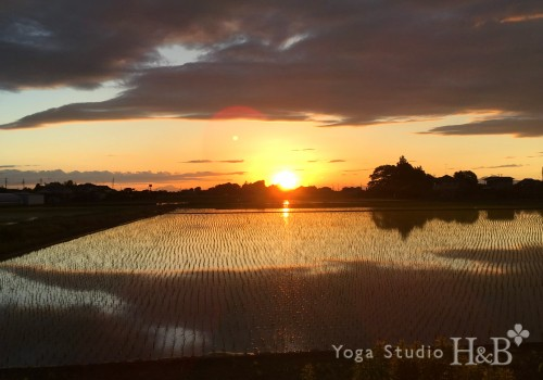 夕日、夕焼け、羽生市の絶景